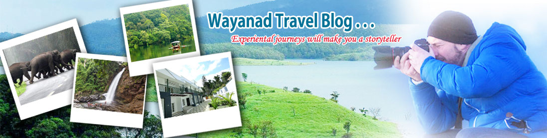 Wayanad Resorts Travel Blog