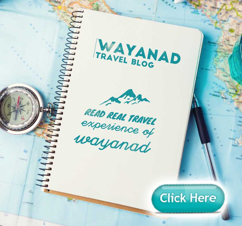 Wayanad Blog
